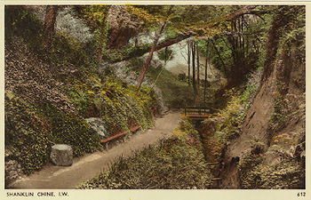 Inside Shanklin Chine